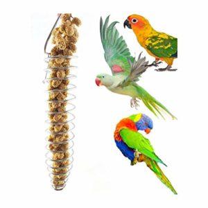 Breale – Oiseaux à spirale en acier inoxydable suspendus – Pour les fruits et légumes – Pour les perroquets sauvages