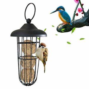 Distributeur de nourriture pour oiseaux sauvages automatiques avec anneau de transport, distributeur automatique de nourriture pour oiseaux avec support en métal de qualité supérieure pour l'extérieur