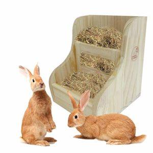 Dubleir Mangeoire À Foin en Bois pour Lapin – Râtelier À Foin Lapin, 2 en 1 Cadre en Paille en Bois Bol pour Aliments Cochon d'Inde Totoro Grass Frames
