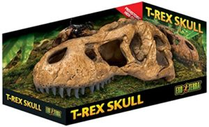 Exo terra Decor Crane T Rex Skull