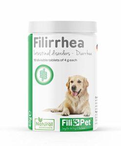 Filipet Comprimés Anti-diarrhée pour Chiens – Supplément de filirrhée – Soulagement de la diarrhée Naturel agit Rapidement de manière Gastro-intestinale pour Traiter diarrhée (10 comprimés de 4G)