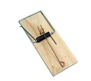 IMEX EL ZORRO 40101ratera Planche Bois No1, 110x 48x 12mm