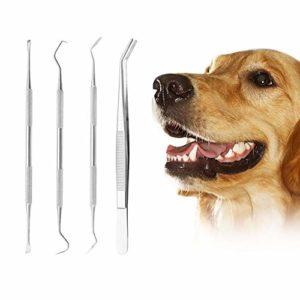 Kits Dentaires pour Chien,Kit Detartrage Dentaire,Trousse à Outils D'hygiène Dentaire,Tartar Remover Set,Outil de Nettoyage des Dents pour Chiens et Chats, Outil Oral en Acier Inoxydable