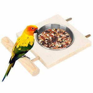 Mangeoire pour Perroquet, Support de mangeoire pour Eau Alimentaire, Accessoire de Cage en Acier Inoxydable Facile à Nettoyer pour l'alimentation des Oiseaux pour(Single Slot)