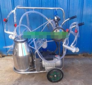 Mini en acier inoxydable Pompe à vide de chèvre Mouton machine à traire Farm Seau Milker (deux animaux en même temps)