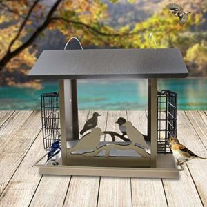 MSchunou Oiseau d'artefact Comestible d'oiseau de Alimentation, Oiseau de boîte de Nourriture d'oiseau de boîte de Nourriture (33 * 21 * 28.5cm)