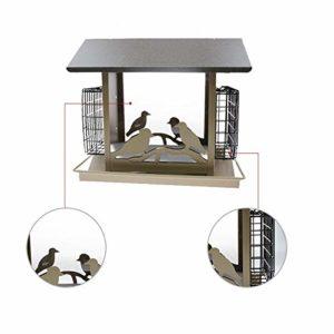 Nosterappou Mangeoire à Oiseaux pour la Protection des Oiseaux