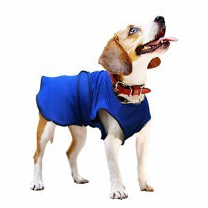 Pawhut Manteau rafraîchissant pour Chien Manteau d'été Taille S Polyester Bleu
