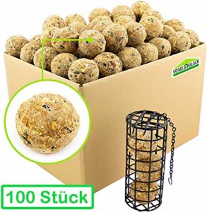 Pfiffikus Fat Balls Pack of 100 + Fat Ball Holder as a Set, Wild Bird Food for Summer and Winter, Dumplings and Bird Food Dispenser for Hanging, Feeding Station with Bird Food for Domestic Birds.