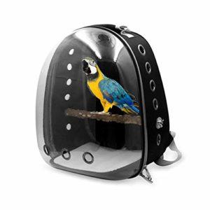 Sac De Transport pour Oiseaux Transparent en PVC Sac à Dos de Transport Cage à Oiseaux pour Oiseaux Hamster, Rat, Gerbilles Bagage Voyage Transporteur Animal