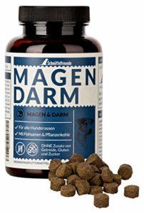 Schnüffelfreunde Magen Darm – Chien I Suppléments de Digestion pour Chiens – Comprimés pour le Soutien Digestif et Gastrique – Fabriqué en Allemagne (150g)