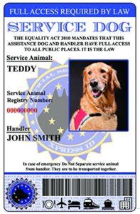 Service Carte d'identité pour chien Union européenne Version (Custom W/holographique plastification)