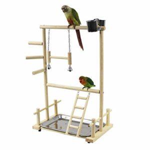 Terrain de Jeu pour Perroquet Terrain de Jeu pour Oiseaux Terrain de Jeu Cockatiel Terrain de Jeu en Bois Perche Gymnase Ladder Ladder
