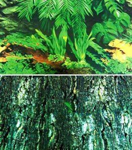 Trixie Mur arrière pour Terrarium Double Face avec Tropic/Motif écorce, 150x 60cm, Lot de 4