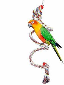 Une corde pour oiseaux, des jouets à spirale grimpante pour une balançoire pour perroquet de 63 pouces développent la coordination et l'équilibre des oiseaux pour les grands et moyens petits perroquet