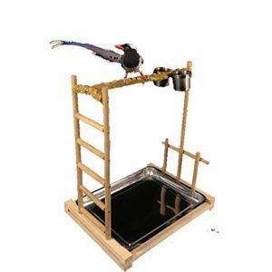 Zengqhui Support d'oiseau Oiseau Stand Adapté for Les Perroquets Station de Parrot et Accessoires for Oiseaux (Couleur : Wood, Size : 49x37x55cm)
